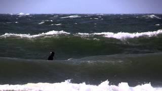 Surf Kåsa 13/4