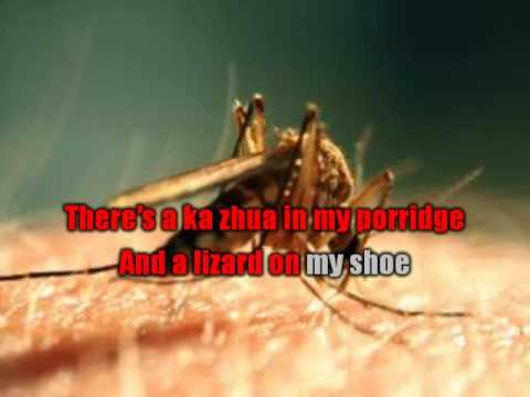 Mosquito song (With Lyric and Sing along) - MrBrown Show Production