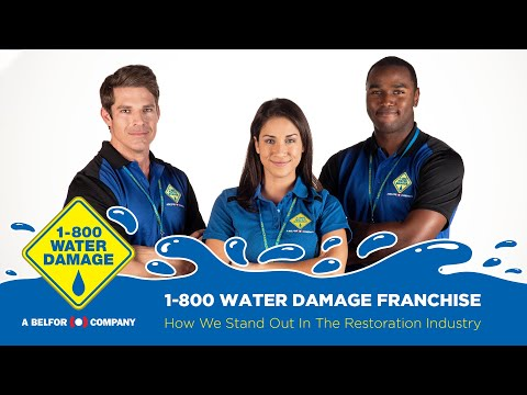 1-800 WATER DAMAGE Franchise - How We Stand Out In The Restoration Industry