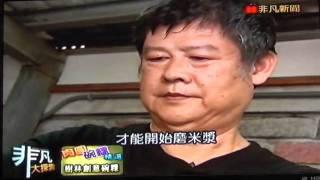 台北樹林 粿全佳 創意方型碗粿