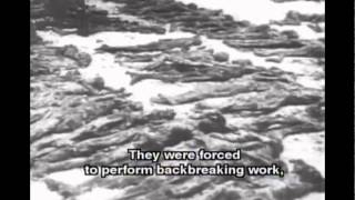 The Atrocities committed by German Fascists in the USSR (2)
