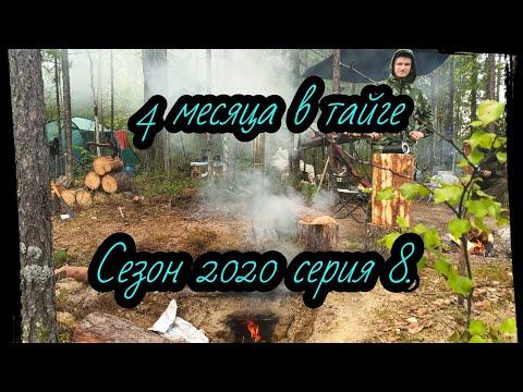 Сезон 2020 серия 8. Охота,  медведь и муравейник, точка 22 км. - Видео онлайн