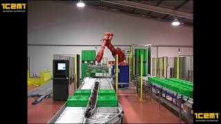 ICEMI - Transport box plant & double palletized system