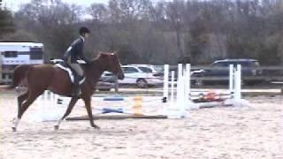 Erik & Mein Schatz at Country Farms Horse Show #2