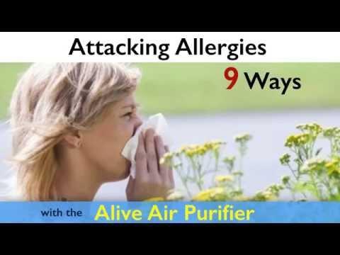 Best Air Allergy Purifier