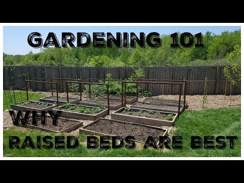 Why Raised Beds Are Best