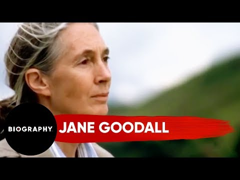 Jane Goodall | Animal Rights Activist, Inspired By Doctor Dolittle | Biography