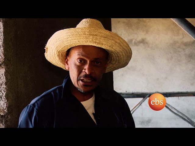 Sunday with EBS : Willo Construction workers struggle