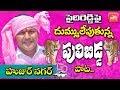 Huzurnagar Pulibidda Song On  Sanampudi Saidi Reddy | Huzurnagar By Election | TRS Songs | YOYO TV