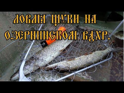 диалоги в отношении рыбалке получай джиг