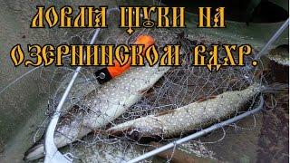 Рыбалка на Озернинском вдх. (спиннинг, джиг).