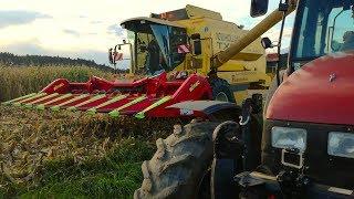 Mais dreschen 2017   New Holland Tx 66   Lohndrusch Pupacher   Team Agrar Oberhaag thumbnail