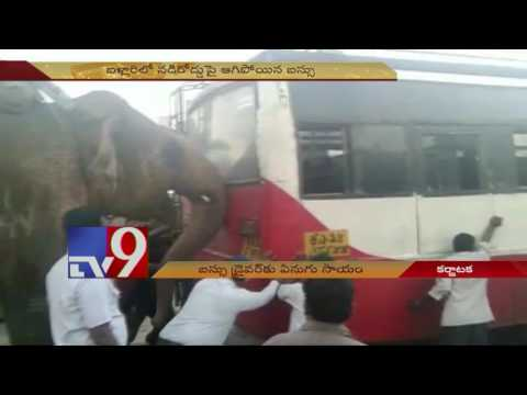 Elephant helps jump start Bus in Karnataka ! - TV9