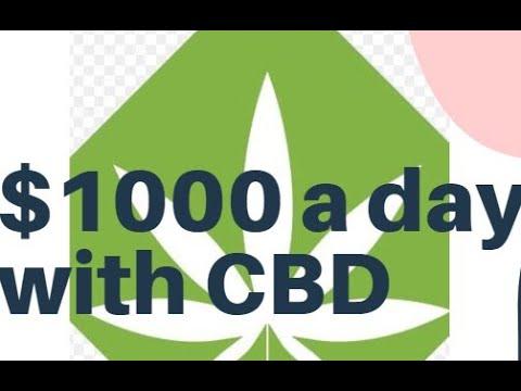 $1000 a Day with CBD OIL/TEA