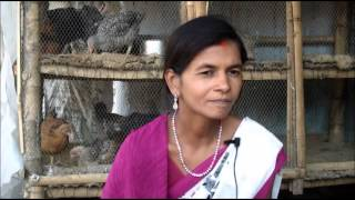 Poultry Success Story_Hindi_Gaya_Jeevika Bihar