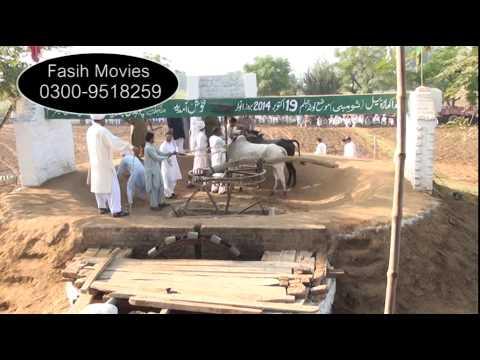 Bull Race Jhelum lota 2014 part 1