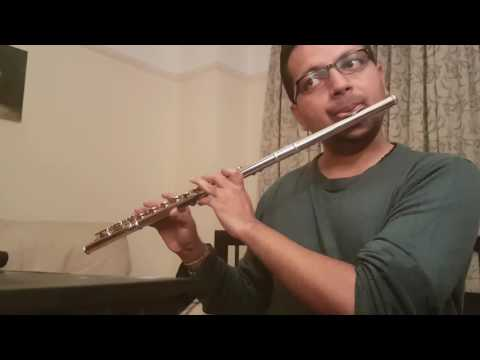Aye Mere Humsafar - Orchestral Flute Instrumental