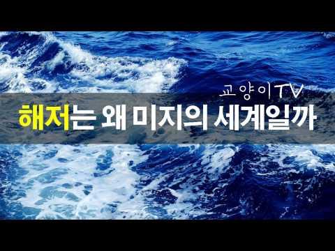 해저는 왜 아직까지 미지의 세계일까? - 교양이TV #3