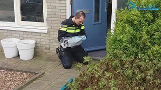 Drie woninginbraken in Asser wijk Kloosterveen