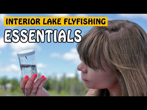 Interior BC Lake Fly Fishing Essentials | Fishing with Rod