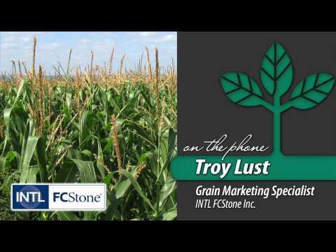 Bottom Line — Future of Corn Prices