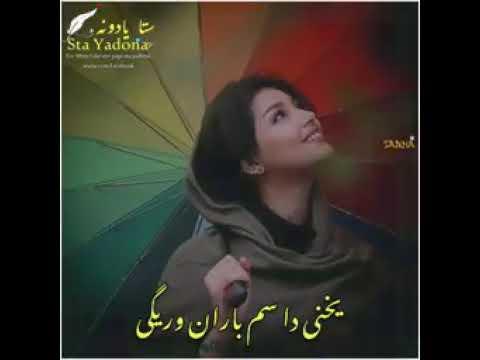 Download pashto song 'pa tol alam baran waregi'