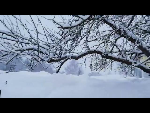 Winter Wonderland in UW
