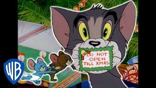 Tom und Jerry auf Deutsch | Weihnachten zu Hause | WB Kids