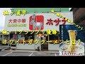 袖ヶ浦市【大衆中華ホサナ】のホワイトガウラーメン White-Gau Ramen of HOSANA in Sodegaura.【飯動画】