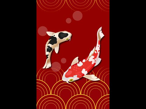 Koi Fish Story The Legend Of The Koi Fish Swimming Upstream To Become A Dragon