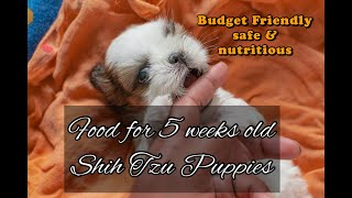 A Budget Friendly Meal for Shih Tzu Puppies