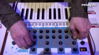 mmag.ru: Musikmesse 2015 - AKAI TIMBRE WOLF - аналоговый синтезатор