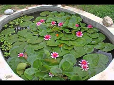 Small Garden Pond Ideas small home garden ponds and waterfalls ideas youtube Diy Decorating Ideas For Small Garden Pond Ideas