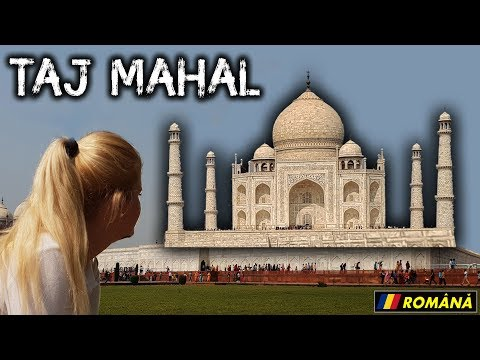 Taj Mahal, Fortul Rosu si maimutele din Agra (India vlog)