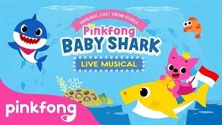 """SAKSIKAN PINKFONG """"BABY SHARK"""" LIVE MUSICAL - DATANG KE INDONESIA Untuk Pertama Kalinya!"""