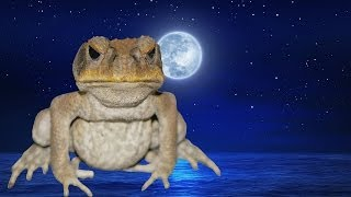 Cane Toad Thumbnail
