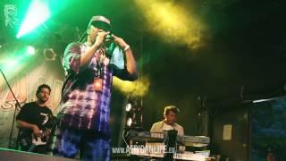 Vido Jelashe @ Reggae Jam 2014, 01.-03.08. Bersenbrück