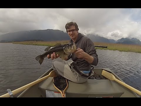 Pitt Polder Bass
