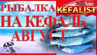 Как ловить  кефаль с берега в августе на Черном море