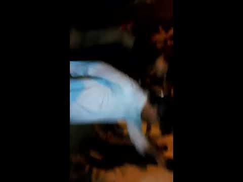 Sarangzai attan in City College Multan