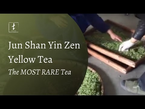 Jun Shan Yin Zhen