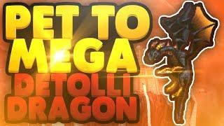 Pet To Mega : Detolli's Dragon