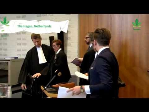 Double Dutch - The Hypocrisy of the Dutch Government