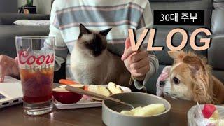 혼밥먹고 요리하고 고양이 강아지와 함께하는 생활 30대…