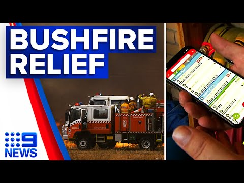 30-million-dollars spent towards summer bushfire recovery | 9 News Australia thumbnail