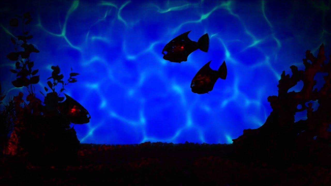 Hexbug Aquabot 30 Remote Controlled Angelfish Youtube Hexbugcircuitboard14