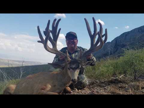 "264"" MONSTER Mule Deer in Arizona!"
