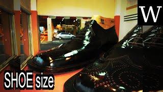 SHOE size - WikiVidi Documentary
