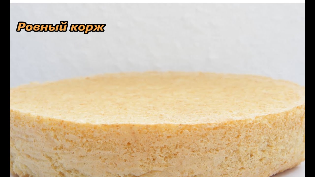 Как сделать корж для бисквита 282