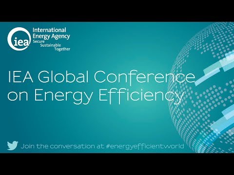 3rd Global Conference on Energy Efficiency: Session One